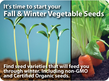 Fall & Winter Vegetable Seeds