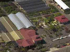 Tsugawa Nursery from the Air
